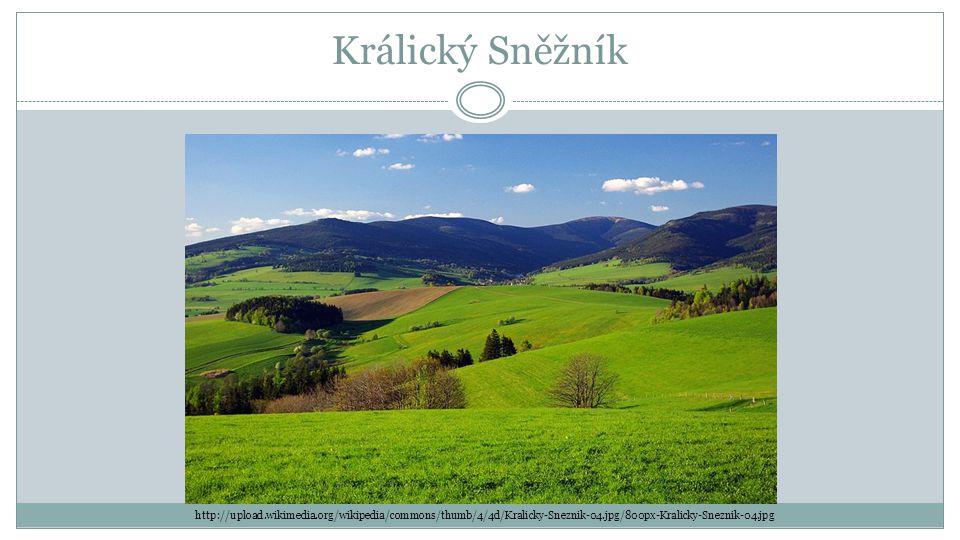 Králický Sněžník http://upload.wikimedia.org/wikipedia/commons/thumb/4/4d/Kralicky-Sneznik-04.jpg/800px-Kralicky-Sneznik-04.jpg