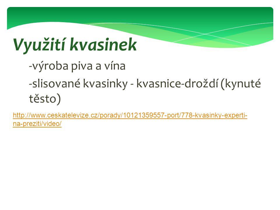 -výroba piva a vína -slisované kvasinky - kvasnice-droždí (kynuté těsto) Využití kvasinek http://www.ceskatelevize.cz/porady/10121359557-port/778-kvas