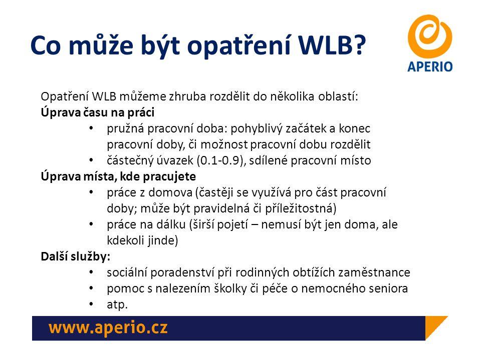 WLB z pohledu manažera/ky I Z hlediska manažera se může podpora slaďování práce a rodiny – podpora WLB – jevit jako další nárok.