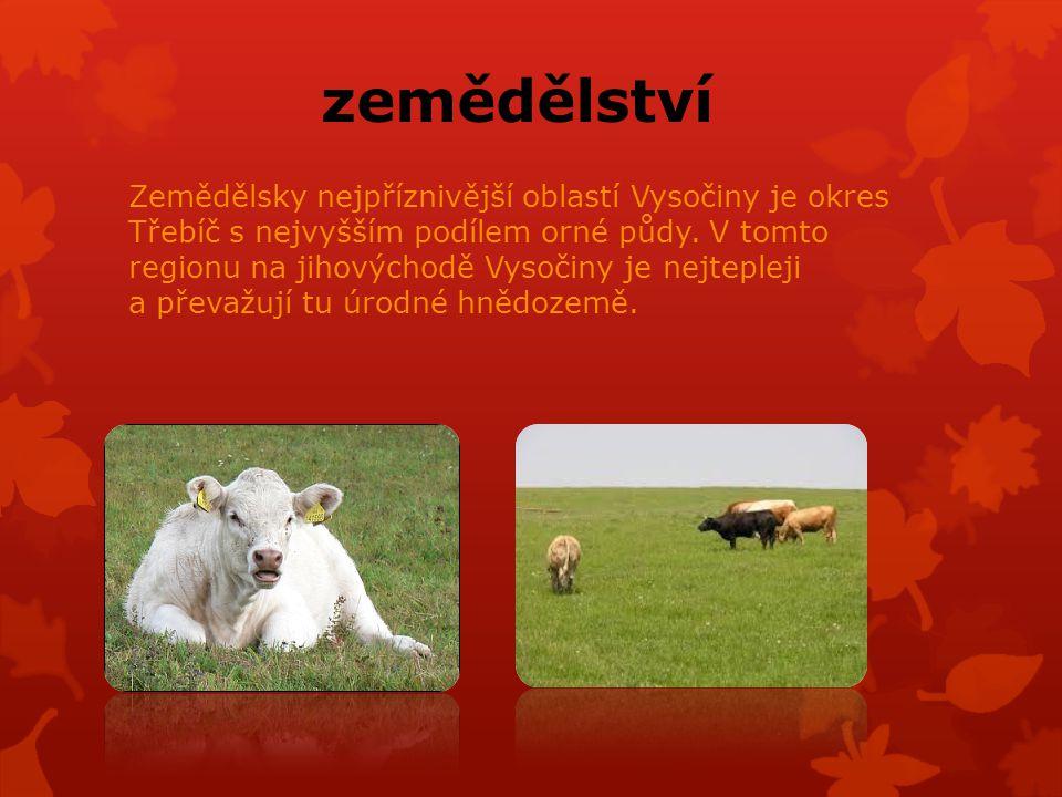 zemědělství Zemědělsky nejpříznivější oblastí Vysočiny je okres Třebíč s nejvyšším podílem orné půdy.