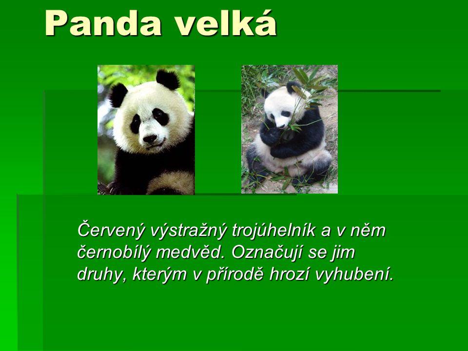 Panda velká Červený výstražný trojúhelník a v něm černobílý medvěd.