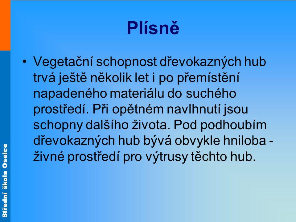 Střední škola Oselce Plísně Vegetační schopnost dřevokazných hub trvá ještě několik let i po přemístění napadeného materiálu do suchého prostředí. Při