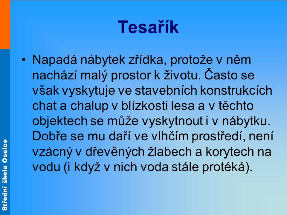 Střední škola Oselce Tesařík Napadá nábytek zřídka, protože v něm nachází malý prostor k životu.