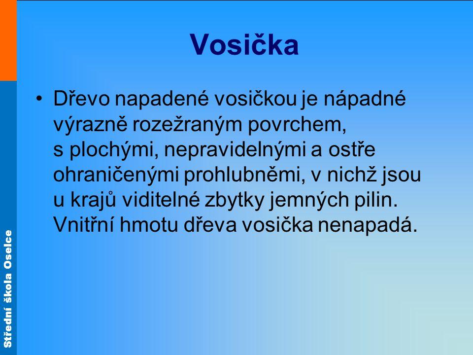 Střední škola Oselce Vosička Dřevo napadené vosičkou je nápadné výrazně rozežraným povrchem, s plochými, nepravidelnými a ostře ohraničenými prohlubněmi, v nichž jsou u krajů viditelné zbytky jemných pilin.