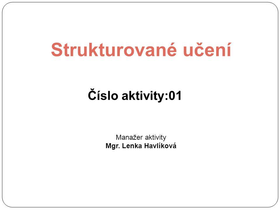 Strukturované učení Číslo aktivity:01 Manažer aktivity Mgr. Lenka Havlíková