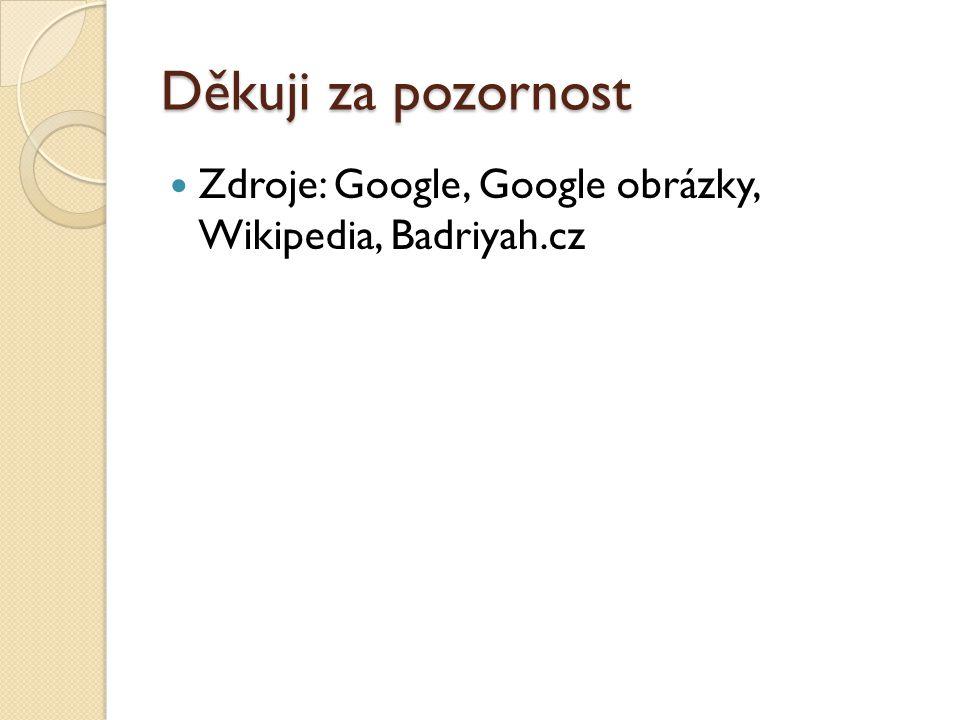 Děkuji za pozornost Zdroje: Google, Google obrázky, Wikipedia, Badriyah.cz