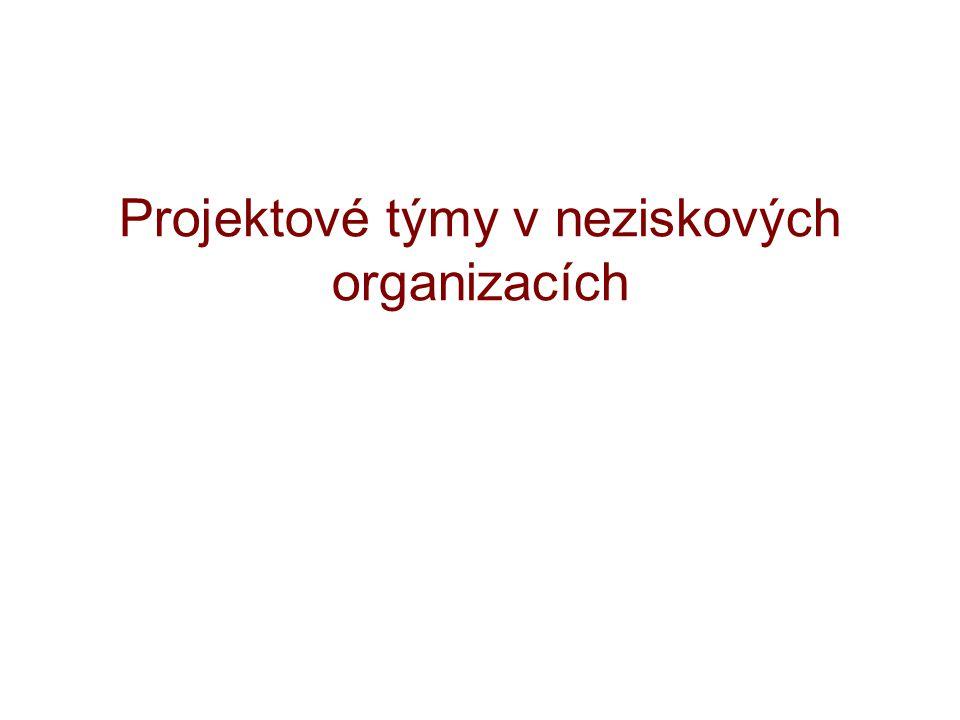 Projektové týmy v neziskových organizacích
