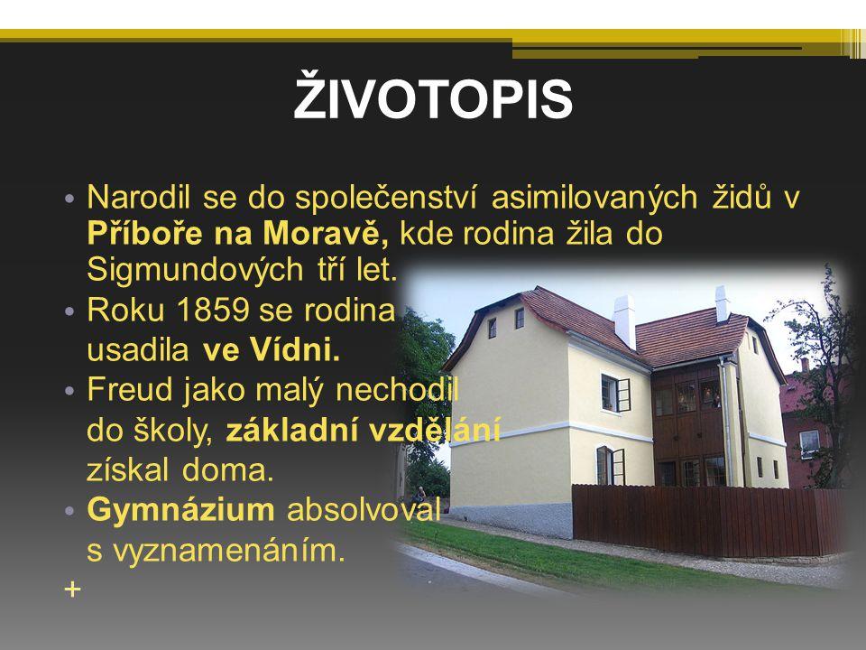 Narodil se do společenství asimilovaných židů v Příboře na Moravě, kde rodina žila do Sigmundových tří let. Roku 1859 se rodina usadila ve Vídni. Freu