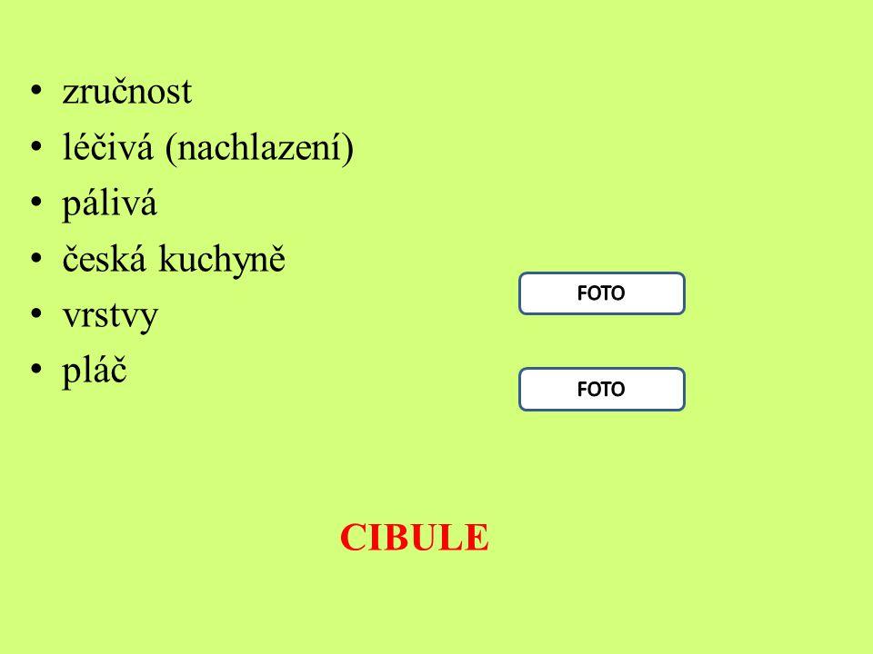 zručnost léčivá (nachlazení) pálivá česká kuchyně vrstvy pláč CIBULE