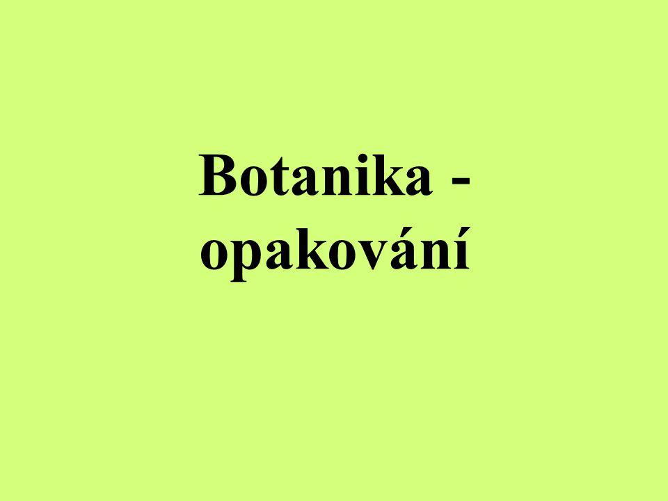 Botanika - opakování