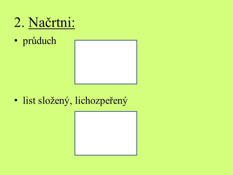 2. Načrtni: průduch list složený, lichozpeřený