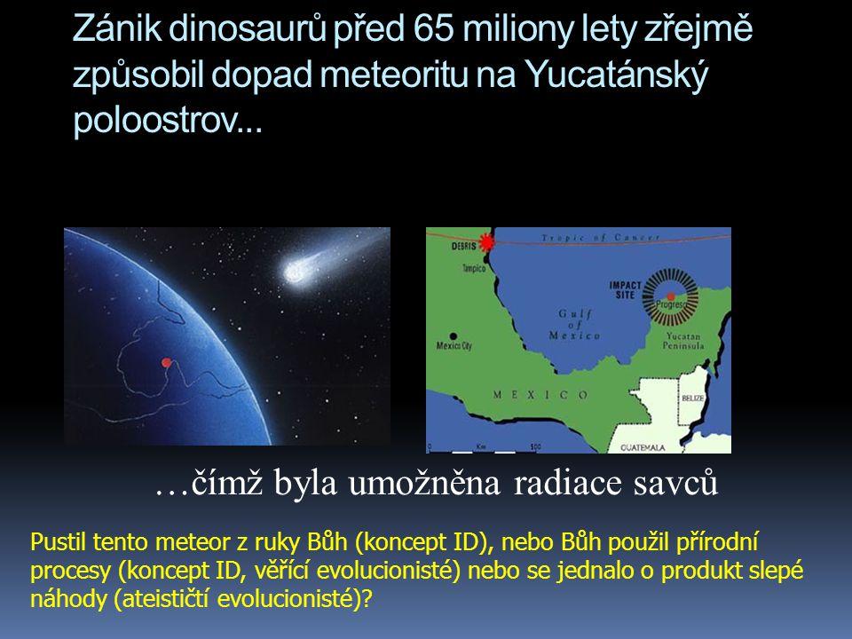 Zánik dinosaurů před 65 miliony lety zřejmě způsobil dopad meteoritu na Yucatánský poloostrov... …čímž byla umožněna radiace savců Pustil tento meteor