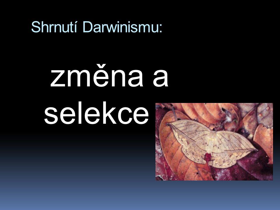 Shrnutí Darwinismu: změna a selekce