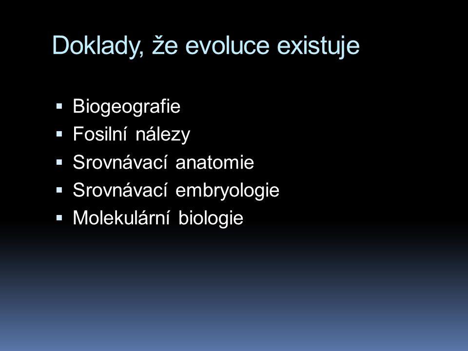 Doklady, že evoluce existuje  Biogeografie  Fosilní nálezy  Srovnávací anatomie  Srovnávací embryologie  Molekulární biologie
