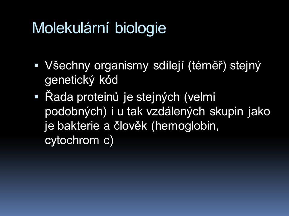 Molekulární biologie  Všechny organismy sdílejí (téměř) stejný genetický kód  Řada proteinů je stejných (velmi podobných) i u tak vzdálených skupin