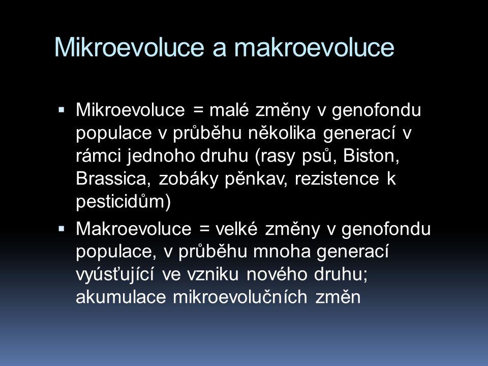 Mikroevoluce a makroevoluce  Mikroevoluce = malé změny v genofondu populace v průběhu několika generací v rámci jednoho druhu (rasy psů, Biston, Bras
