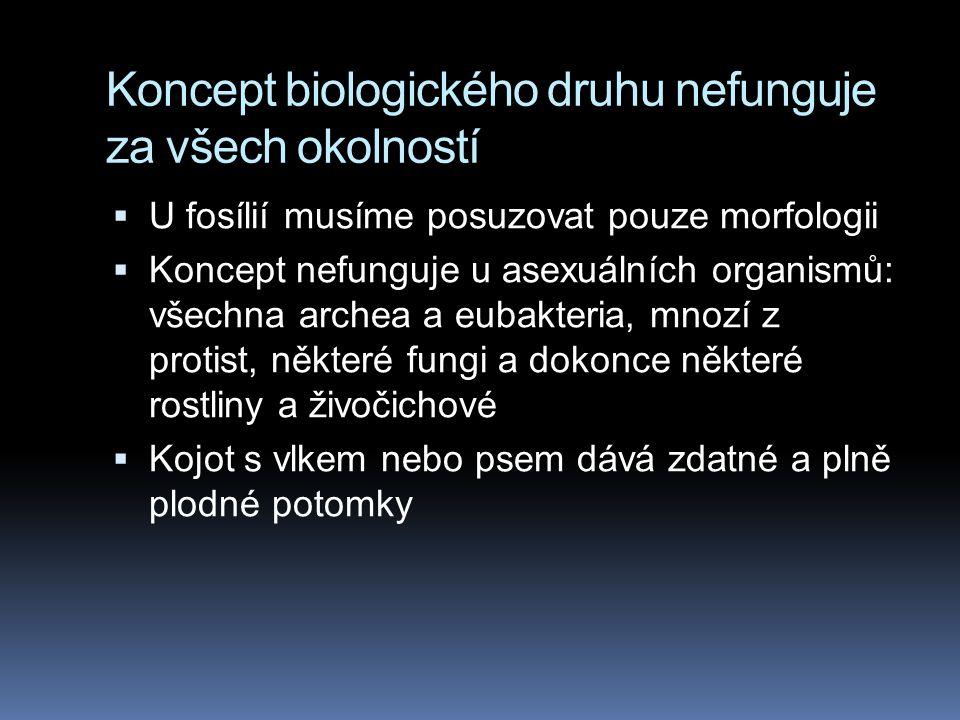 Koncept biologického druhu nefunguje za všech okolností  U fosílií musíme posuzovat pouze morfologii  Koncept nefunguje u asexuálních organismů: vše