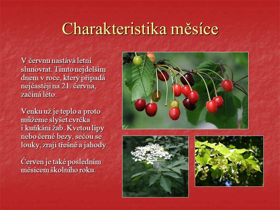 R O K aneb Vzácné svátky, krásné zvyky, příroda i pranostiky část šestá Č E R V E N