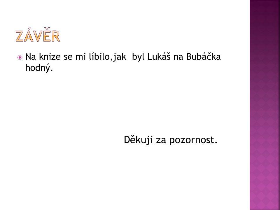  Na knize se mi líbilo,jak byl Lukáš na Bubáčka hodný. Děkuji za pozornost.