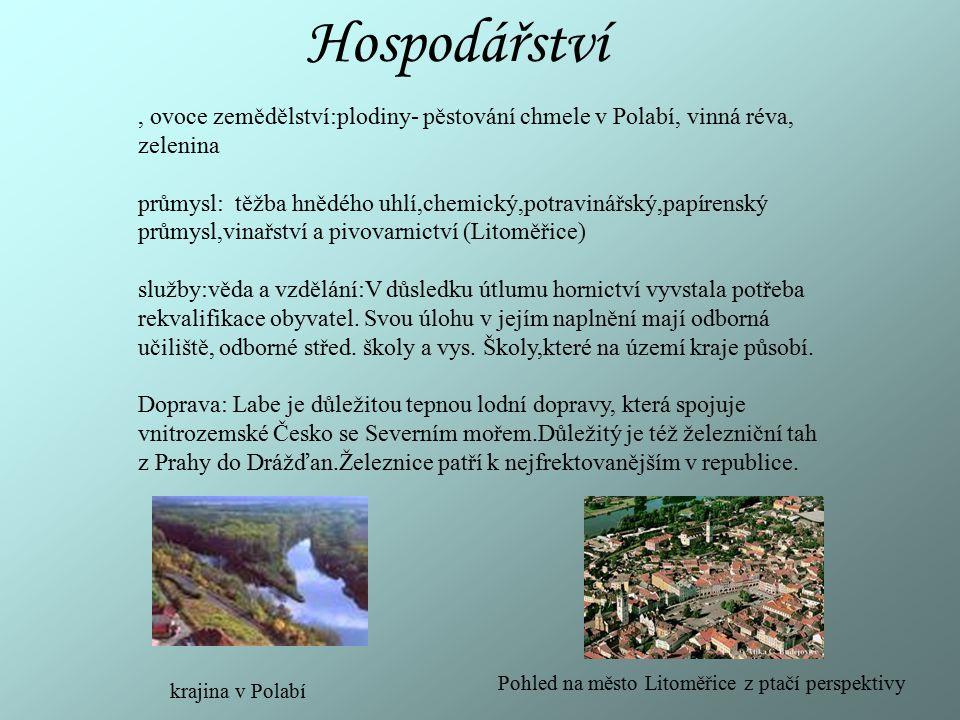 Hospodářství, ovoce zemědělství:plodiny- pěstování chmele v Polabí, vinná réva, zelenina průmysl: těžba hnědého uhlí,chemický,potravinářský,papírenský
