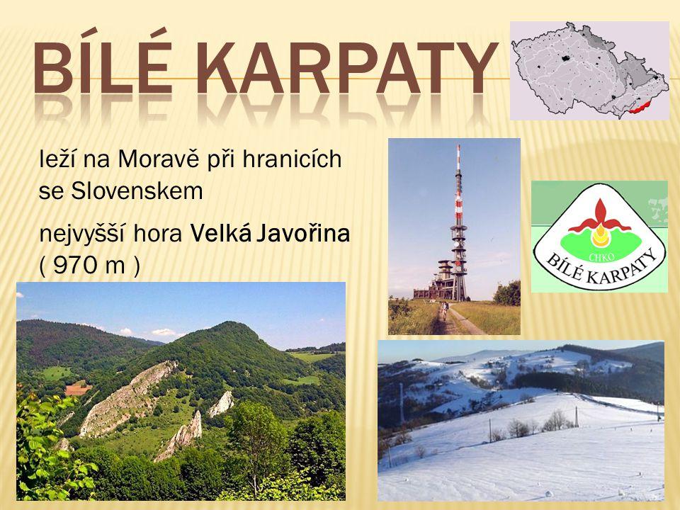 leží na Moravě při hranicích se Slovenskem nejvyšší hora Velká Javořina ( 970 m )