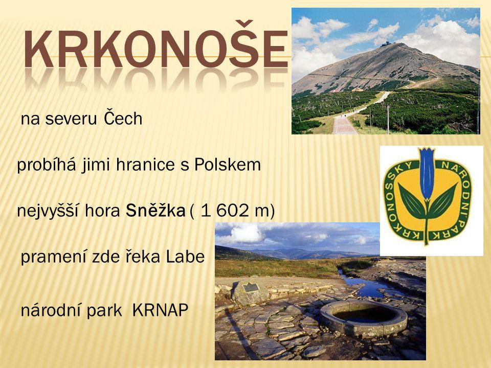 na severu Čech probíhá jimi hranice s Polskem nejvyšší hora Sněžka ( 1 602 m) pramení zde řeka Labe národní park KRNAP