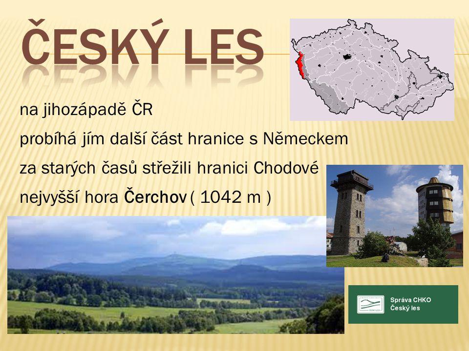 na jihozápadě ČR probíhá jím další část hranice s Německem za starých časů střežili hranici Chodové nejvyšší hora Čerchov ( 1042 m )