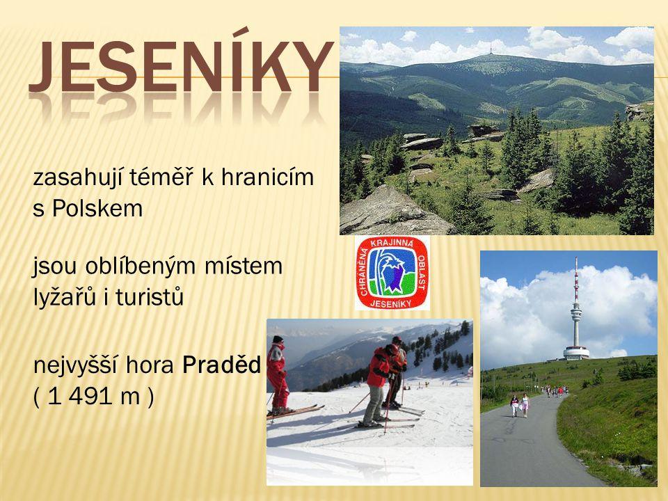 zasahují téměř k hranicím s Polskem jsou oblíbeným místem lyžařů i turistů nejvyšší hora Praděd ( 1 491 m )