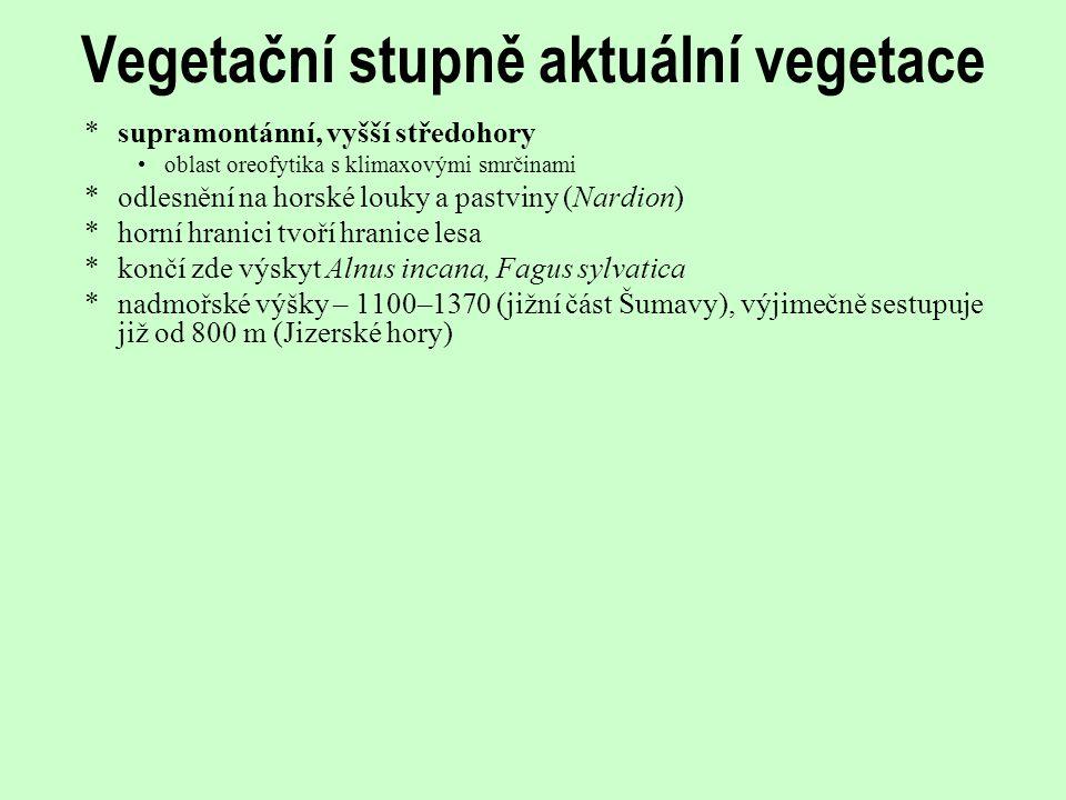 Vegetační stupně aktuální vegetace *supramontánní, vyšší středohory oblast oreofytika s klimaxovými smrčinami *odlesnění na horské louky a pastviny (N