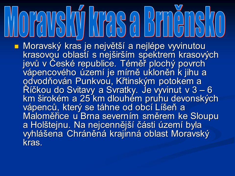 Moravský kras je největší a nejlépe vyvinutou krasovou oblastí s nejširším spektrem krasových jevů v České republice. Téměř plochý povrch vápencového