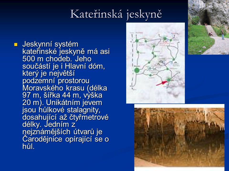 Kateřinská jeskyně Kateřinská jeskyně Jeskynní systém kateřinské jeskyně má asi 500 m chodeb. Jeho součástí je i Hlavní dóm, který je největší podzemn