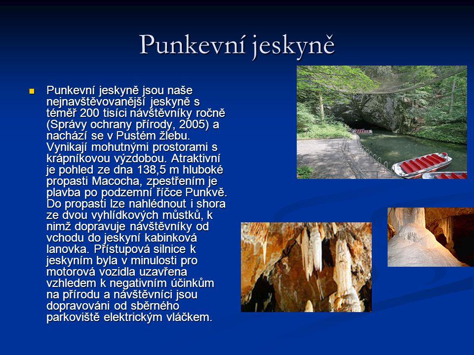Punkevní jeskyně Punkevní jeskyně jsou naše nejnavštěvovanější jeskyně s téměř 200 tisíci návštěvníky ročně (Správy ochrany přírody, 2005) a nachází s