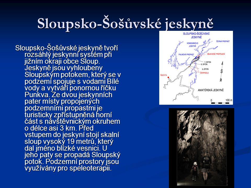 Sloupsko-Šošůvské jeskyně Sloupsko-Šošůvské jeskyně tvoří rozsáhlý jeskynní systém při jižním okraji obce Sloup. Jeskyně jsou vyhloubeny Sloupským pot