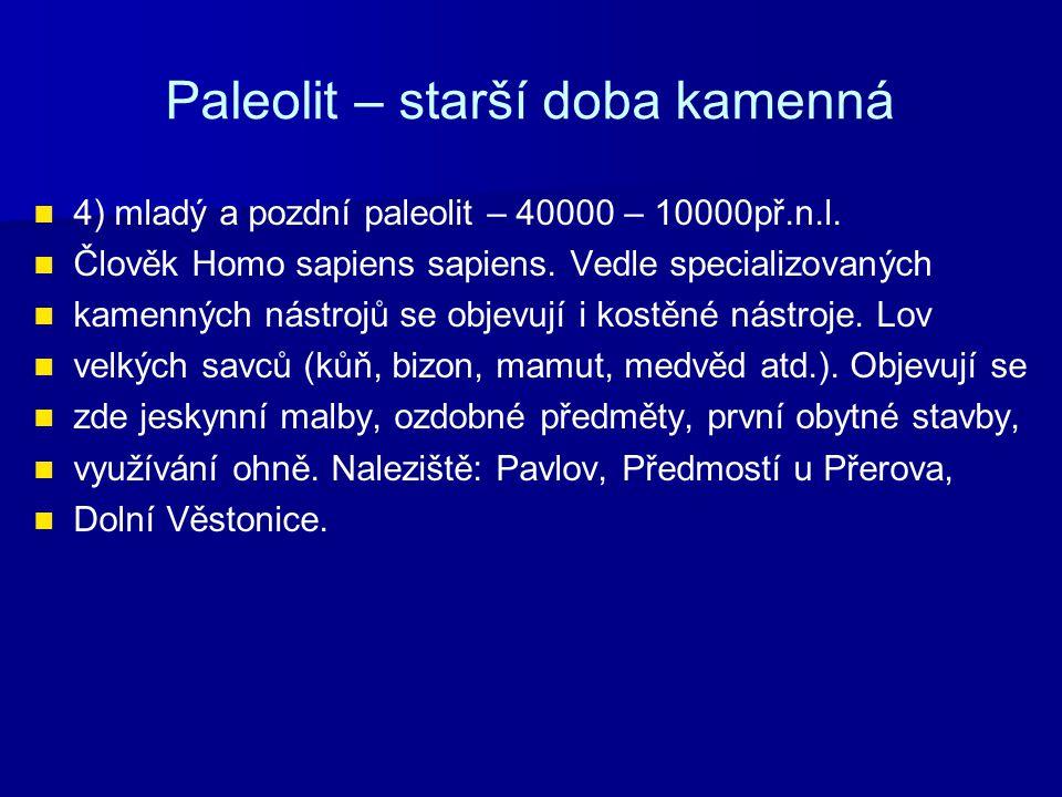 Paleolit – starší doba kamenná 4) mladý a pozdní paleolit – 40000 – 10000př.n.l. Člověk Homo sapiens sapiens. Vedle specializovaných kamenných nástroj