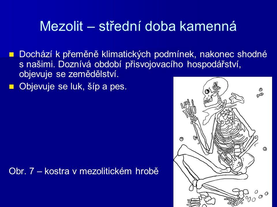 Mezolit – střední doba kamenná Dochází k přeměně klimatických podmínek, nakonec shodné s našimi. Doznívá období přisvojovacího hospodářství, objevuje