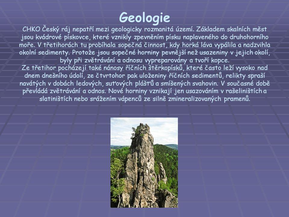 Geologie CHKO Český ráj nepatří mezi geologicky rozmanitá území. Základem skalních měst jsou kvádrové pískovce, které vznikly zpevněním písku naplaven