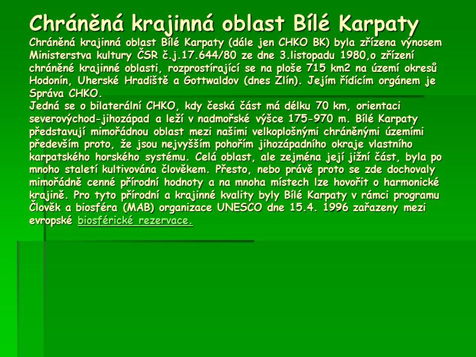 Chráněná krajinná oblast Bílé Karpaty Chráněná krajinná oblast Bílé Karpaty (dále jen CHKO BK) byla zřízena výnosem Ministerstva kultury ČSR č.j.17.64