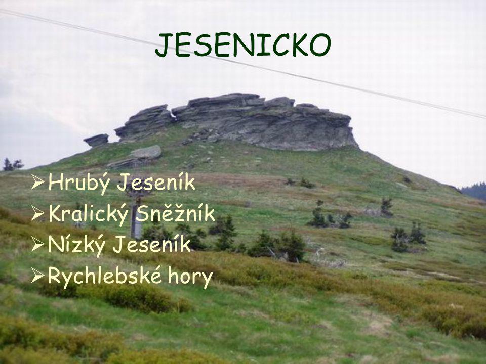 HRUBÝ JESENÍK kerné pohoří (=tektonicky vyzdvižené kry omezené zlomy jsou zlomovými svahy odděleny od okolního nižšího terénu) kerné pohoří (=tektonicky vyzdvižené kry omezené zlomy jsou zlomovými svahy odděleny od okolního nižšího terénu) Nejvyšší bod: Praděd (1.491,3 m n.m.) (5) Nejvyšší bod: Praděd (1.491,3 m n.m.) (5) Dělí se na Pradědskou, Keprnickou a Medvědskou hornatinu Dělí se na Pradědskou, Keprnickou a Medvědskou hornatinu Rozděluje Baltské a Černé úmoří Rozděluje Baltské a Černé úmoří Pozůstatky ledových dob – polygony (mrazem zvětrané půdy) Pozůstatky ledových dob – polygony (mrazem zvětrané půdy)