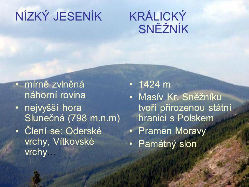 NÍZKÝ JESENÍK mírně zvlněná náhorní rovina nejvyšší hora Slunečná (798 m.n.m) Člení se: Oderské vrchy, Vítkovské vrchy… KRÁLICKÝ SNĚŽNÍK 1424 m Masív