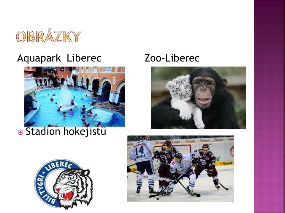 Aquapark Liberec Zoo-Liberec  Stadion hokejistů