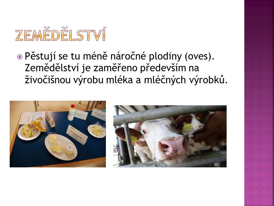  Pěstují se tu méně náročné plodiny (oves). Zemědělství je zaměřeno především na živočišnou výrobu mléka a mléčných výrobků.