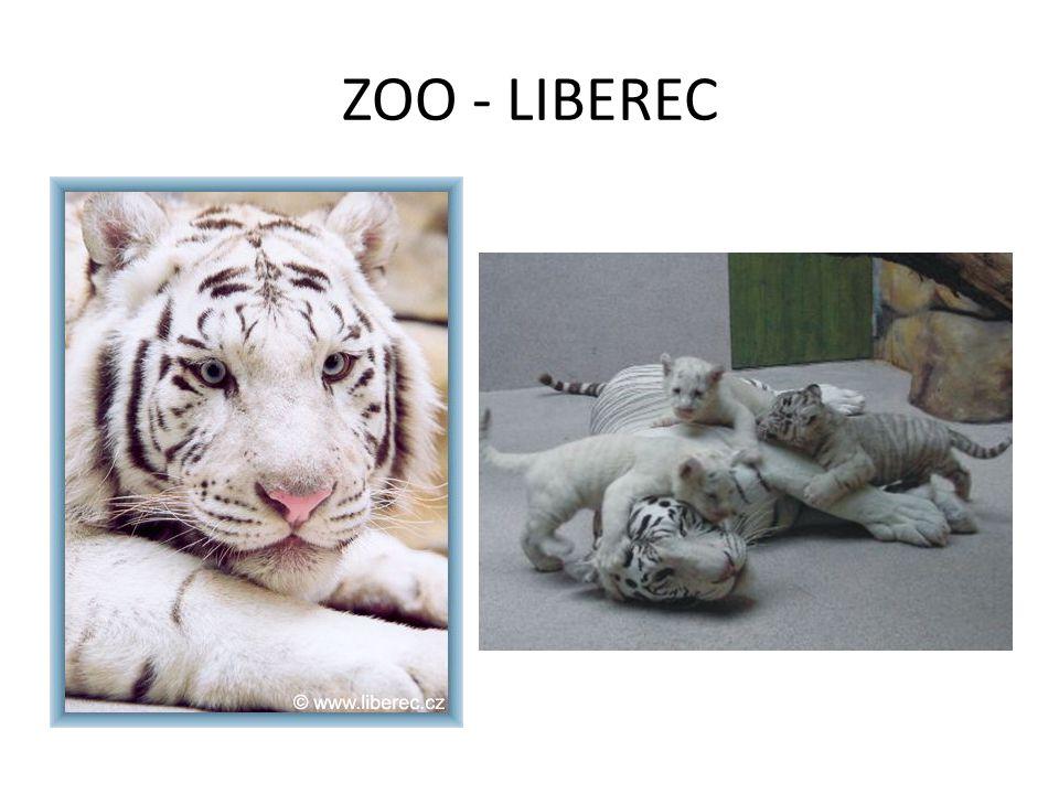 ZOO - LIBEREC