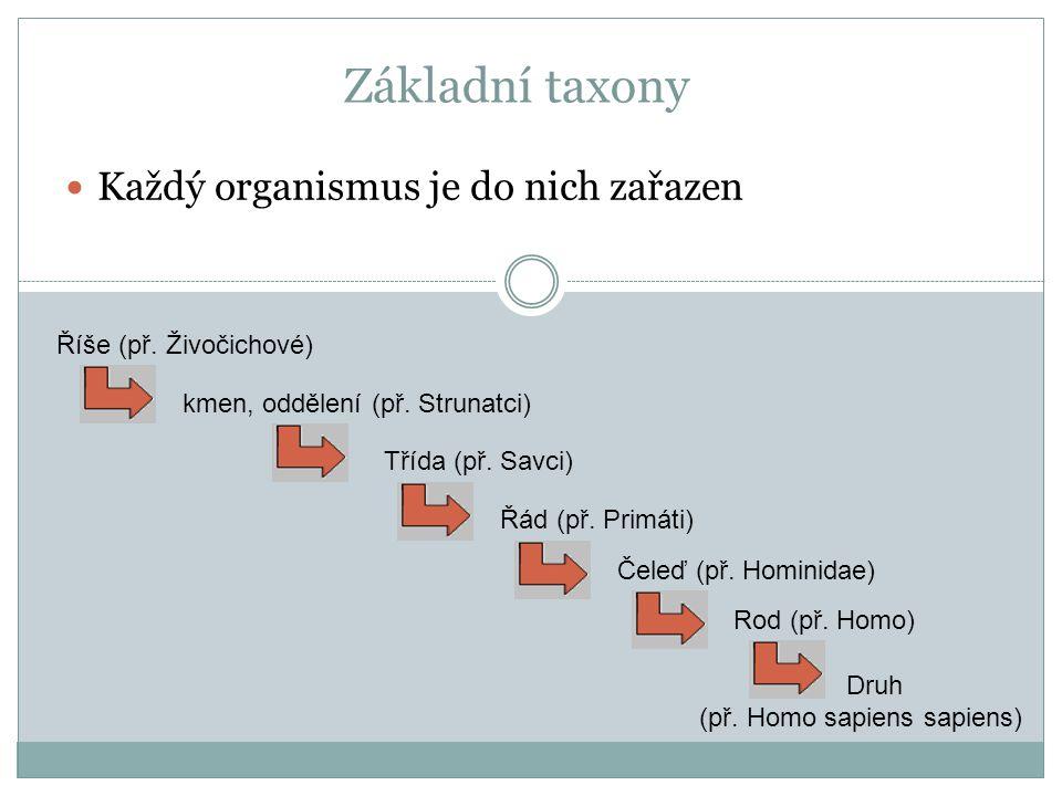 Základní taxony Každý organismus je do nich zařazen Říše (př.