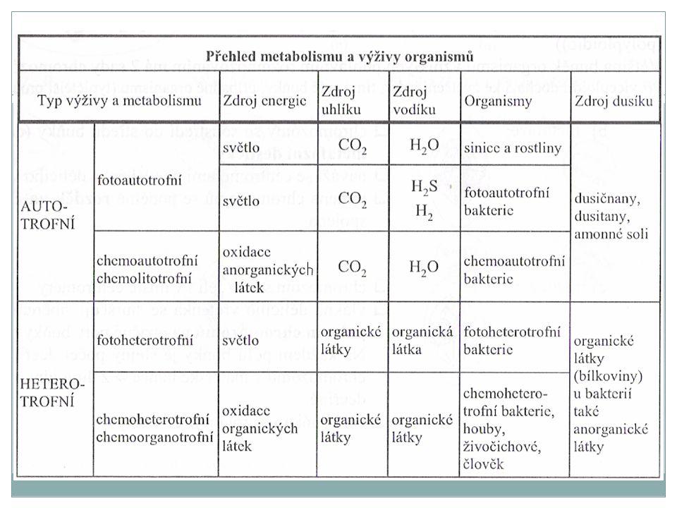 Vztah organismů ke kyslíku Aeroby Anaeroby Fakultativní anaeroby