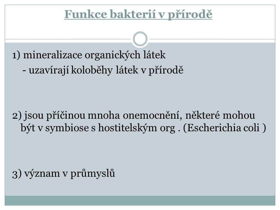 Funkce bakterií v přírodě 1) mineralizace organických látek - uzavírají koloběhy látek v přírodě 2) jsou příčinou mnoha onemocnění, některé mohou být v symbiose s hostitelským org.