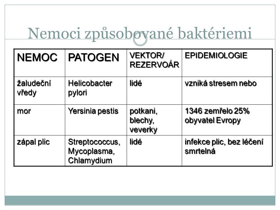 Nemoci způsobované baktériemi NEMOCPATOGEN VEKTOR/ REZERVOÁR EPIDEMIOLOGIE Cholera Vibrio cholerae lidské výkaly, plankton průjem a smrt dehydratací.