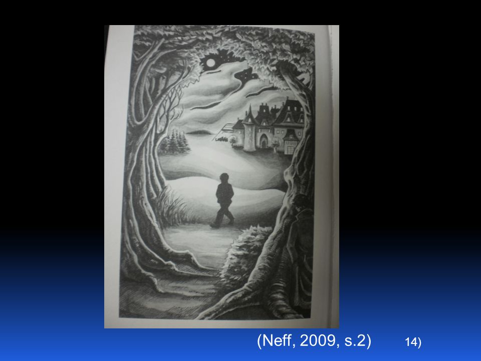 14) (Neff, 2009, s.2)