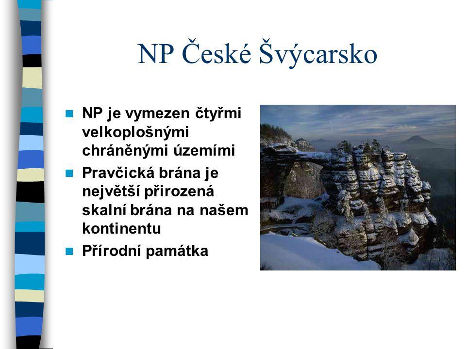 NP České Švýcarsko NP je vymezen čtyřmi velkoplošnými chráněnými územími Pravčická brána je největší přirozená skalní brána na našem kontinentu Přírod