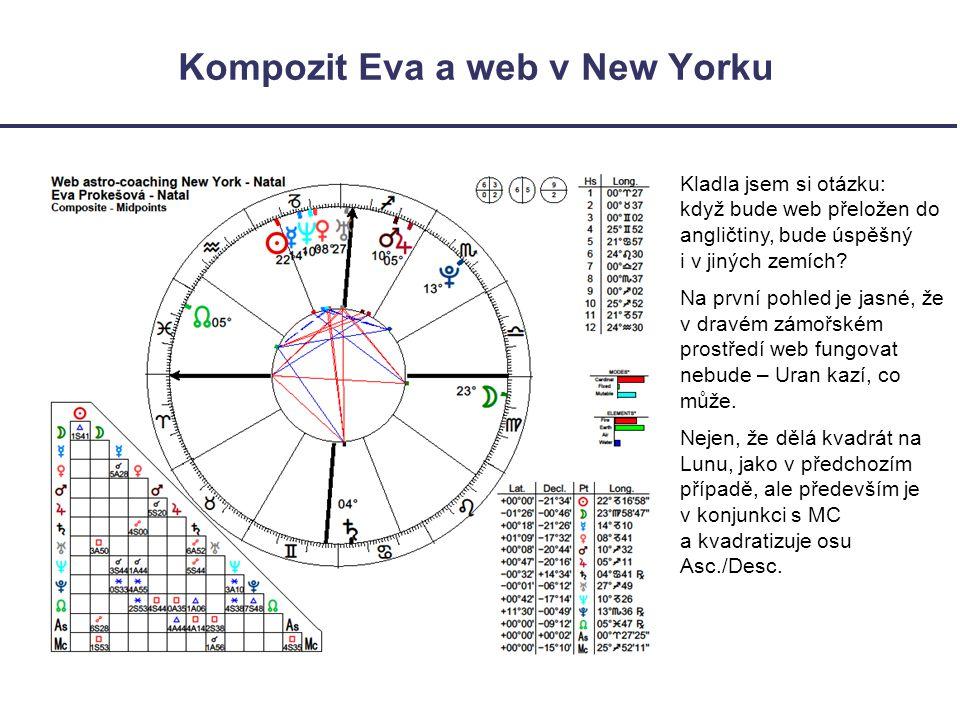 Kompozit Eva a web v New Yorku Kladla jsem si otázku: když bude web přeložen do angličtiny, bude úspěšný i v jiných zemích.