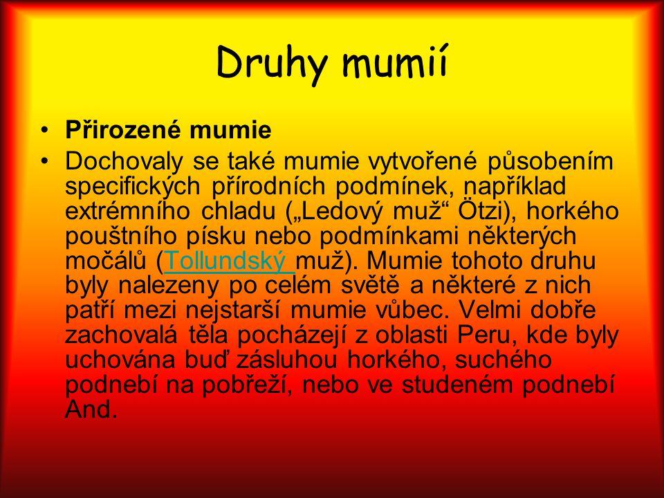 """Druhy mumií Přirozené mumie Dochovaly se také mumie vytvořené působením specifických přírodních podmínek, například extrémního chladu (""""Ledový muž"""" Öt"""